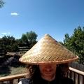 William Ivey (@winterheart) Avatar