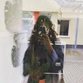 Ana Wende (@hana_what) Avatar