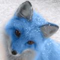 Genova Foxclaw (@martin447) Avatar