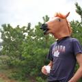 George (@karaev) Avatar