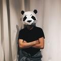 WU-ZHENG (@wu-zheng) Avatar