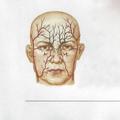 KÁI SÁTTA (@kaisatta) Avatar