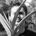 Luis Alfonso Monje (@kotomonk) Avatar