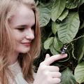 Andrea (@livingloaf) Avatar