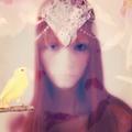 Dasha Voronova (@zarenfrau) Avatar
