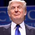 Donald Trump (@therealdonaldtrump) Avatar