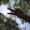 @ovoxo_nelly Avatar
