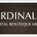 CARDINAL N Digital Boutique (@cardinalno) Avatar