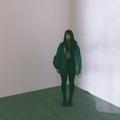 Annie Kim (@annieskim) Avatar
