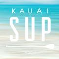 Kauai Paddle Boarding (@kauaisuprental) Avatar