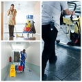 Tile and Grout Cleaning Service  (@groutcleaningperth) Avatar