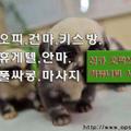 「공덕오피」오피쓰 (@gwanghwamunopss) Avatar