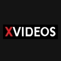 XVideos Official✓ (@xvideos) Avatar