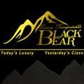 BlackBear Luxury (@blackbearlux) Avatar