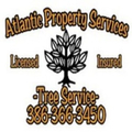 Atlantic Property Services (@apstreeservice) Avatar