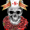 Team Guns N' Roses (@teamgunsnroses) Avatar