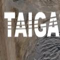 Taiga Air Services (@taigaaerial) Avatar