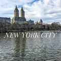 NewYorkCity (@newyorkcity_) Avatar