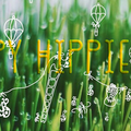 @happyhippielab Avatar
