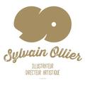 @sylvainollier-9768 Avatar