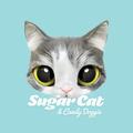 @sugarcat Avatar