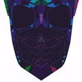 Thomas Dryden (@bureaudesign) Avatar