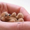 Alexandra's Bears (@alexandrasbears) Avatar