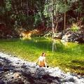 Hayley (@hales_annem) Avatar