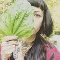 Ritual Botanica (@ritual_botanica) Avatar