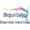 Bhojpuri Gallery (@bhojpurigallery) Avatar