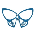 Ajna Butterfly Collection (@ajnabutterflycollection) Avatar
