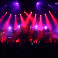 Meadow Brook Amphitheatre (@brookamphitheatre) Avatar