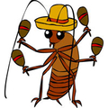 veneno para cucarachas (@venenoparacucarachas) Avatar