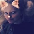 Allie Fysh  (@allyzcat) Avatar