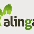 Alinga Web Design (@alingawebdesignau) Avatar