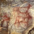 Cueva de  (@cuevadelagarma) Avatar