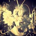 ALBERTO MARTINS NETO  (@botanikasp) Avatar