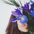 Katia Z (@ladeer) Avatar