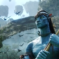 @sonychai Avatar