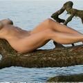 Nina (@ninalismbleachapot) Avatar
