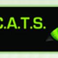 Catstrainingau (@catstrainingau) Avatar