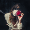 Federica Corbelli (@lubaluft) Avatar