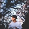 Ryan Pham (@ryanphm) Avatar
