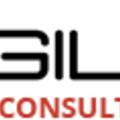 Agile Consultancy (@agileworldvisa) Avatar