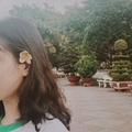 Vu Tran Chieu Anh (@carolynvee) Avatar