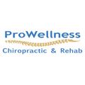 ProWellness Chiropractic and Rehab (@prowellness) Avatar