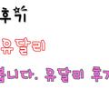 청주유달리 (@cheongjuyudalli) Avatar