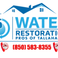 Water Restoration Pros (@waterdamage17) Avatar