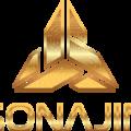 (@sonajin_coin) Avatar