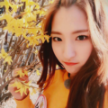 ivy (@gyuvesutted) Avatar